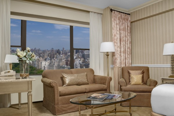https://suiteness.imgix.net/destinations/new-york/park-lane-new-york/suites/executive-park-view-junior-suite-executive-park-double-/ParkLane-PremierParkViewJuniorSuite-SittingArea.jpg?w=96px&h=64px&crop=edges&auto=compress,format